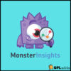 MonsterInsights - The Best Google Analytics Plugin