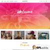 Themify – Shoppe Premium WordPress Theme
