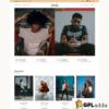 CSSIgniter – Amaryllis WordPress Theme