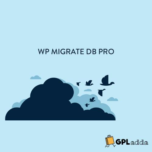 WP Migrate DB Pro